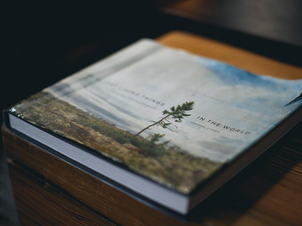 self-publishing-4
